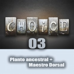 Planto anc + maestro dorsal  (the choice 03)